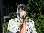 elvis in the bushes