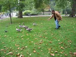 Just quackers about ducks